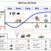 Start-up cycle: how it resembles our life
